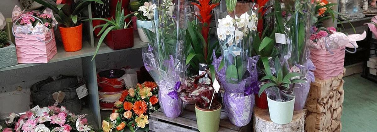 Flowers-By-Ann Shop Carrickmacross Shop Online