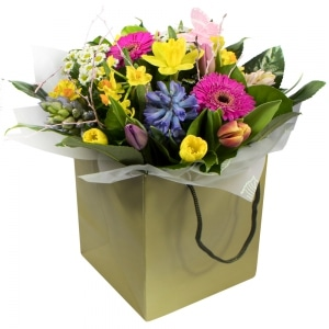 Because you are special spring flowers