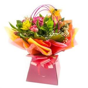 Colour pop flowers